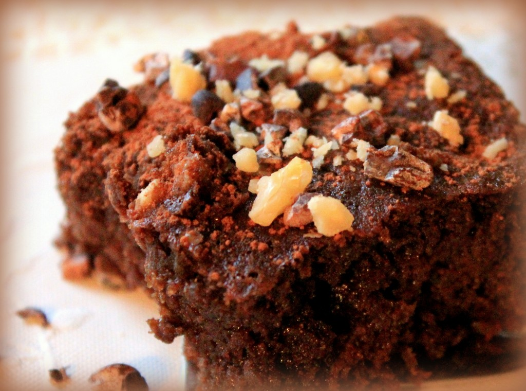 Gluten-free Paleo brownies made with coconut flour