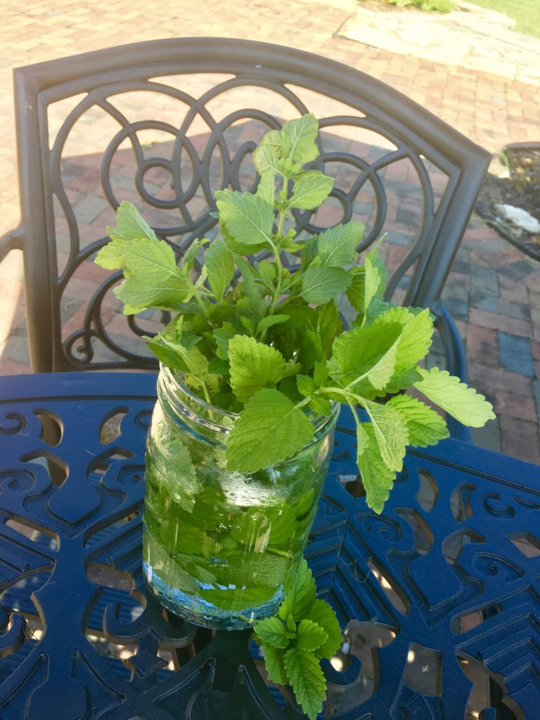 Lemon Balm Calming Tea