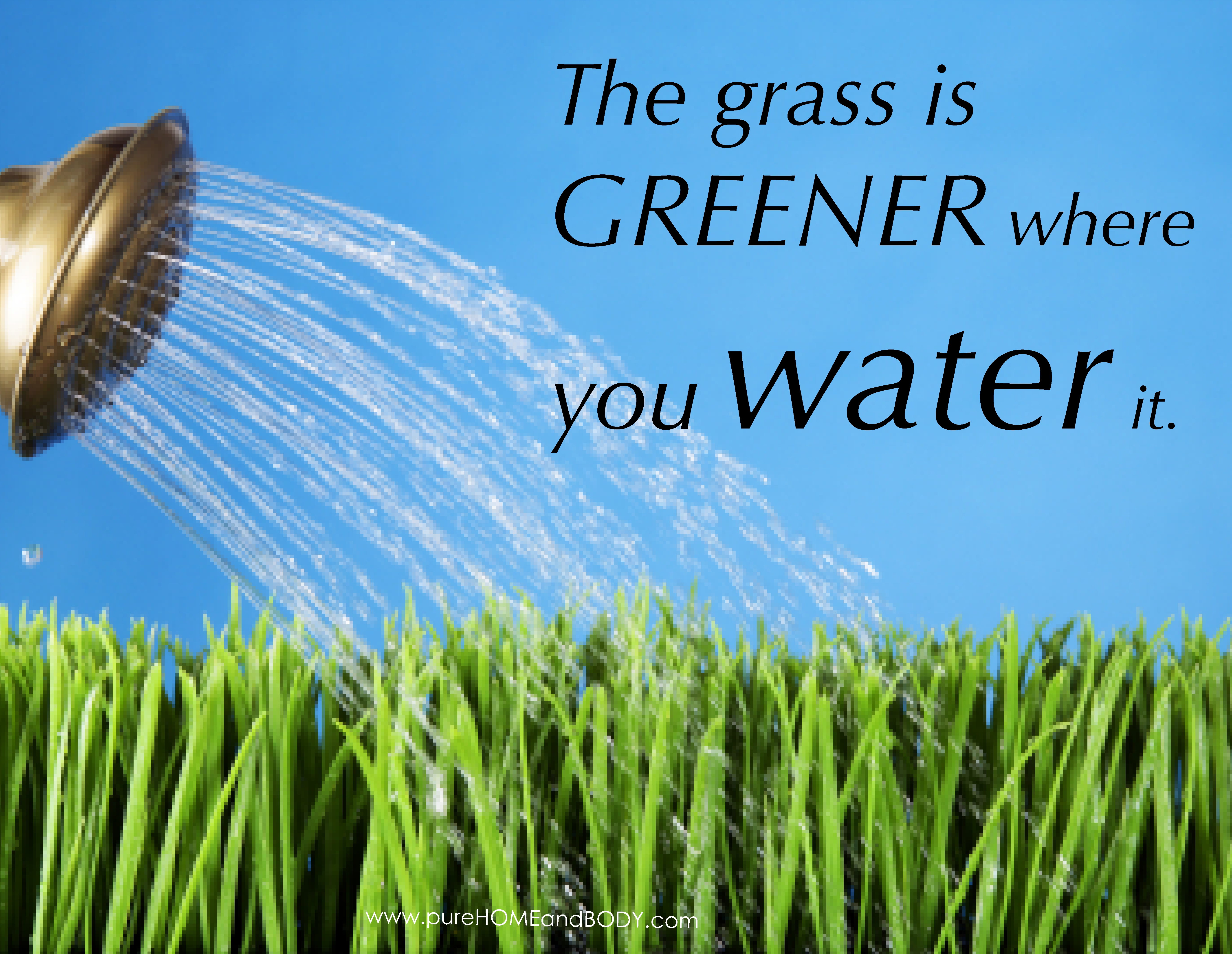 Grass Is Always Greener Quotes: A The Grass Is Greener Quote1