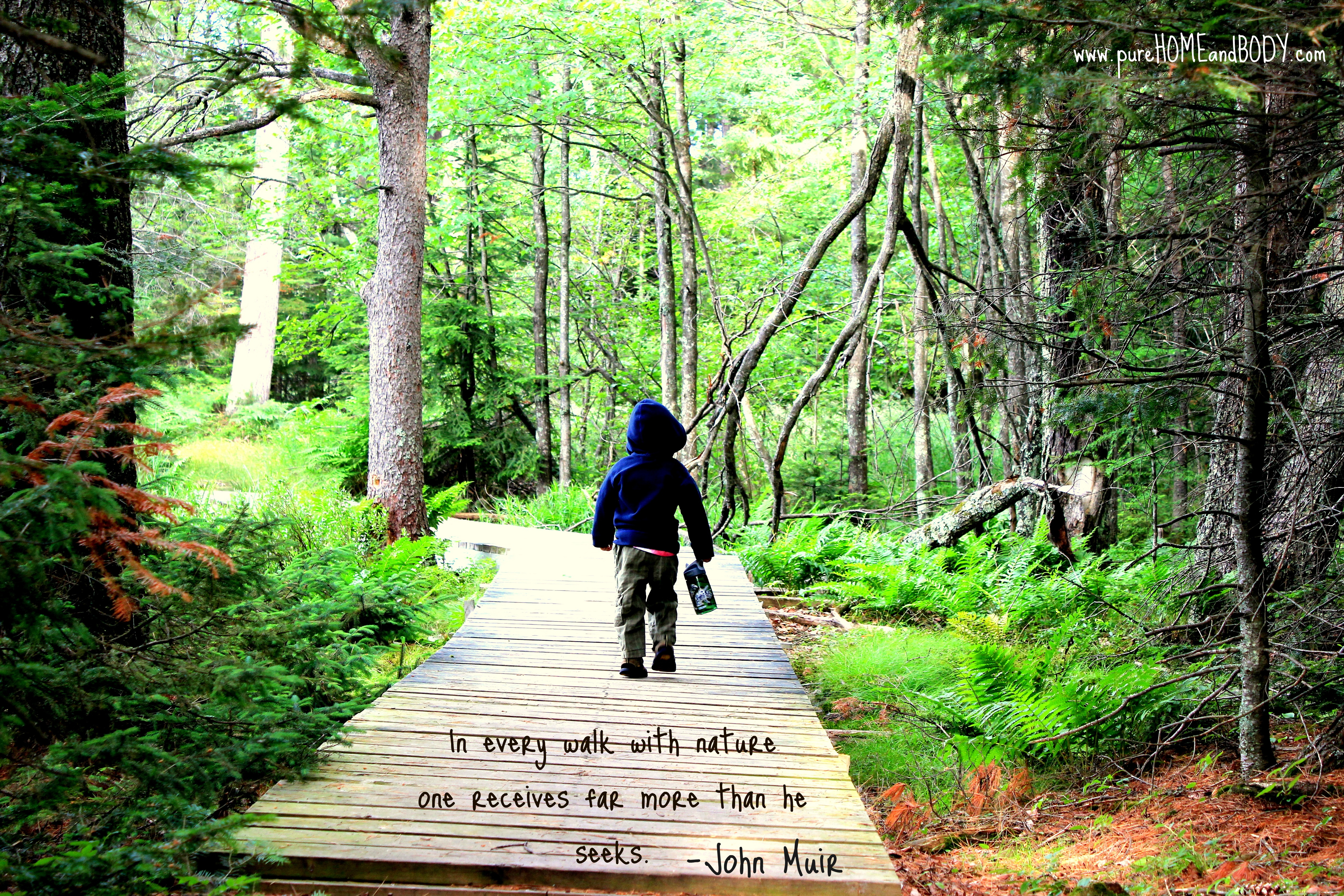 John Muir Quote Pure Home And Body Llc
