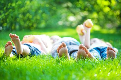 Non-toxic lawn care